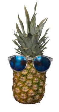 ananas-kopia